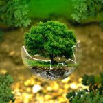 水道代節約術!お財布にも地球にも優しいエコ生活をはじめよう(後編)